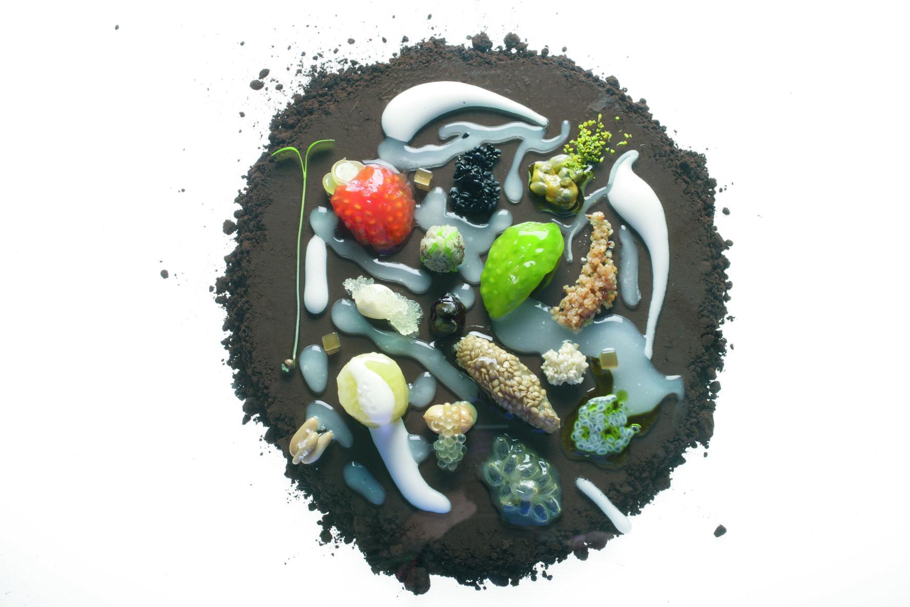 Dise o gastronom a y cubiertos para hosteler a for Ferran adria platos